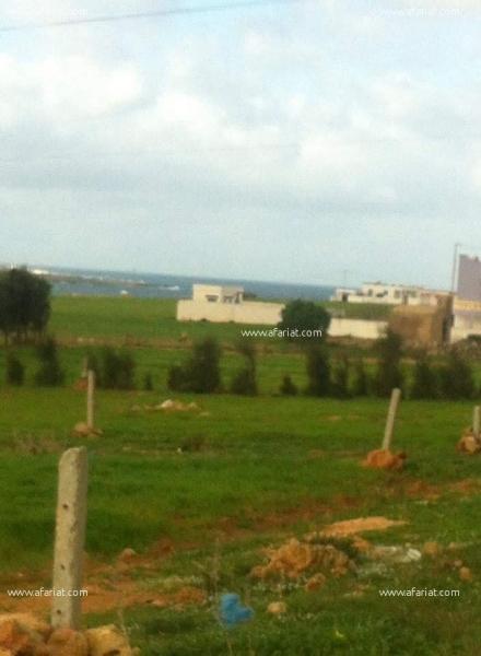 إعلان على أفاريات تونس ل: أرض جميلة قريبة من البحر وفي منطقة سكنية
