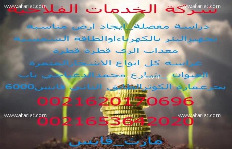إعلان على أفاريات تونس ل: بيع مساحات كبرى لأراضي فلاحية