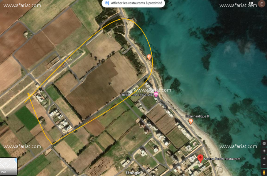 إعلان على أفاريات تونس ل: أرض دار علوش قليبية