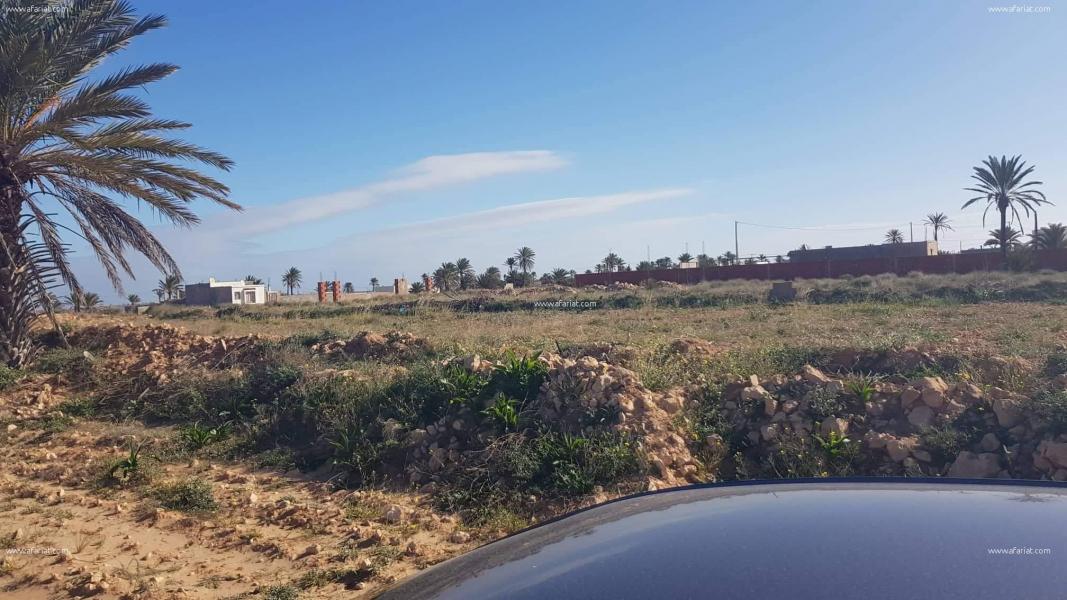 إعلان على أفاريات تونس ل: ارض للبيع بقرقنة