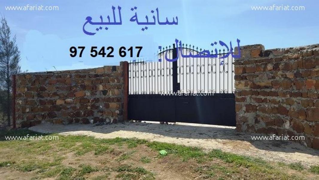 إعلان على أفاريات تونس ل: سانية 1.5 هكتار للبيع فرصة لعشاق الفلاحة ..